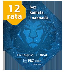 VISA Premium logo